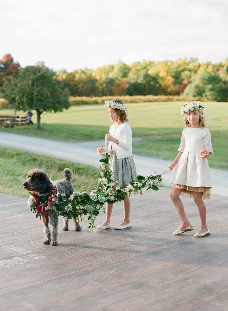 wedding-dog-flower-girl