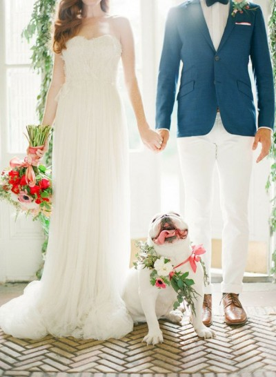 floral-collar-for-wedding-dog