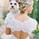 2016_bridescom-Editorial_Images-01-pets-in-weddings-Large-pets-in-weddings-ben-q-photography